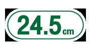 sanita แซนนิต้า sanitary pads ผ้าอนามัย ic pads 24.5cm
